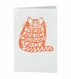 Card - There are no ordinary cats