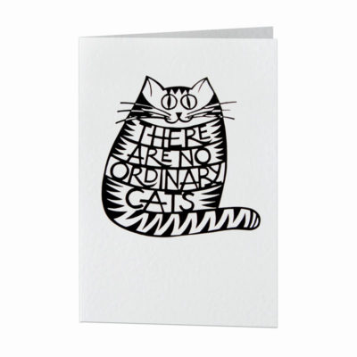 There are no ordinary cats card